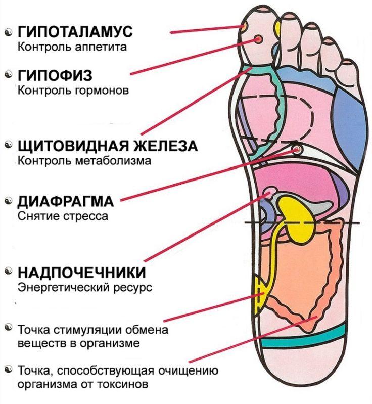 Рефлексология стопы