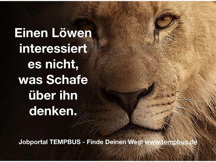 TEMPBUS Dein Jobportal in Deutschland www.tempbus.de