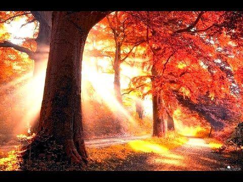 Y aún así, pese a todo lo aprendido, volvemos una y otra vez a exponernos a la ilusión de no viajar solos, de soñar con unos ojos que nos miran y nos ven al otro lado. Pues siempre asoma un guiño entre una nube y otra, un sol radiante amanece en cada corazón que quiere vivirse su hora... http://www.lamagiadelasrelaciones.com/