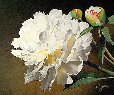 WatercolorFlorals : Artist Jacqueline Gnott