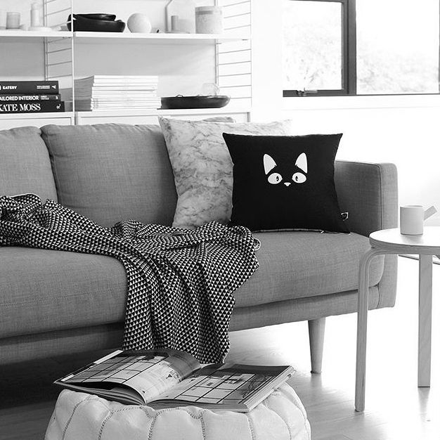 Our Cooper Cat & Marble cushions looking lovely in The Design Chasers home! #designministrynz