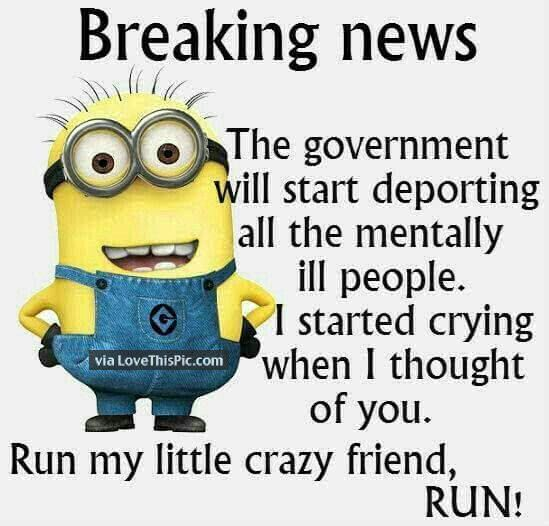 Minion Pictures With Quotes: 25+ Best Ideas About Funny Quote Pictures On Pinterest