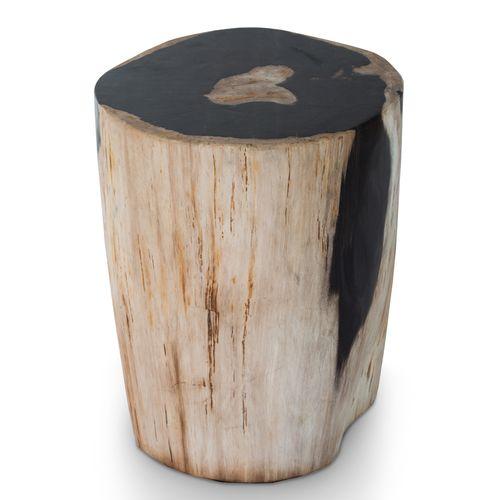 Petrified wood stool pf 2006