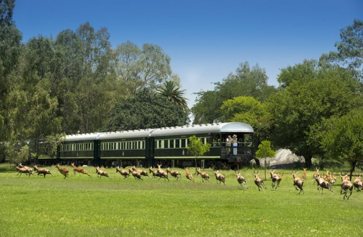 Hurry to get 10% off! Experience rail travel of a bygone era through Zimbabwe & SA. This luxury Crafted Holiday takes care of all the details. Spend 3 nights on the sophisticated Rovos Rail, heading to Vic Falls. Along the way, enjoy outstanding service, meals served in luxury dining cars, stunning views of the grasslands, & an exciting game drive in Hwange National Park. Customise your journey in our Crafter, Skype, or call us toll-free for more details >>