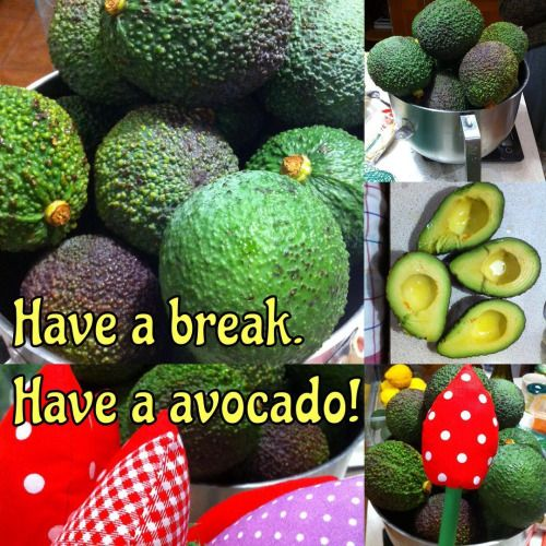 Sometimes we need a break. And then why not to go for avocados directly from Sicily! #sewingforkids  #handmadewithlove   #musthave  #musthaves    #birthdaygift #handmadegifts   #giftideas  #etsy  #etsyseller  #etsyshop  #avocado #avocados  #italianfood #sicily #flowers #fabric