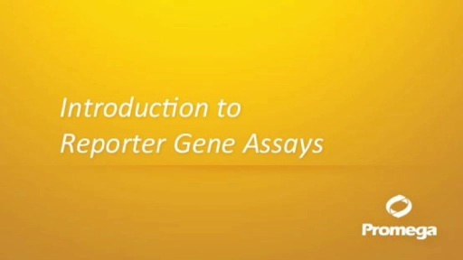 Introduction to Reporter Gene Assays. This animation introduces the concept of reporter gene assays, The Dual-Luciferase® Assay is used as the model.