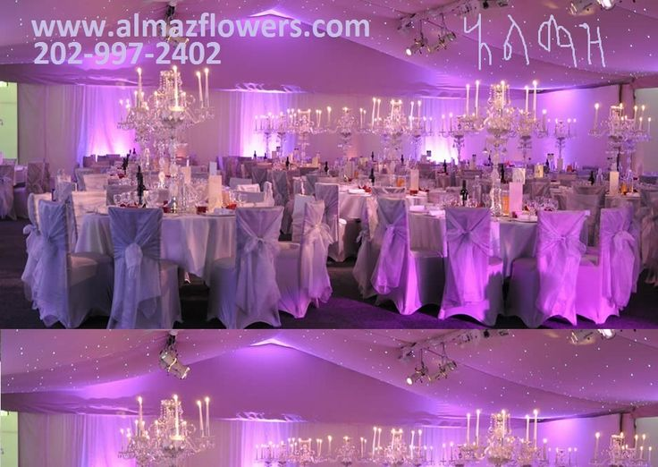 23 best almaz wedding decor eritreanethiopian wedding limousines wedding ballroom and stage decoration by almaz wedding decoration services and rental junglespirit Image collections