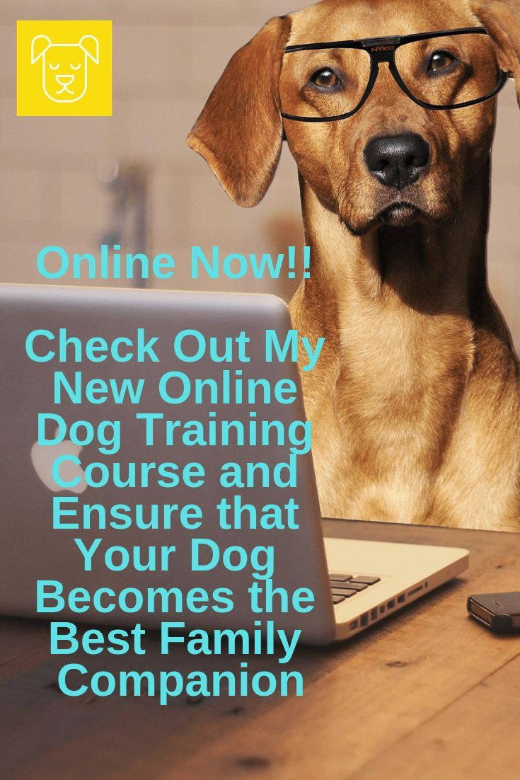 Click Inside To Learn More About My New Online Training Class