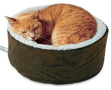 Pets are among the most significant members of the family, however, getting perfect cat supplies can be expensive. This article describes the benefits of buying cat beds and other supplies online.