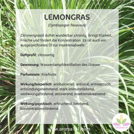 Zitronengrasöl duftet wunderbar zitronig, bringt Klarheit, Frische und fördert die Konzentration. Es ist auch ein ausgezeichnetes Öl zur Insektenabwehr.