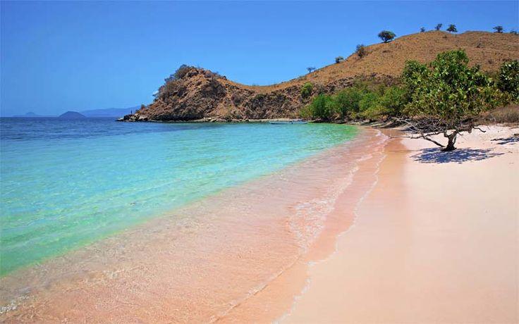 Pink Beach is het bekendste strand van de Komodo Eilanden. Het zand is roze gekleurd door het koraal en het is een van de beste snorkellocaties. #Komodo #pinkbeach #Indonesië #rondreis #vakantie #komodonationalpark #originalasia.nl