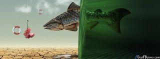 Exploring Photography: Amazing Photographs :Facebook World around...!
