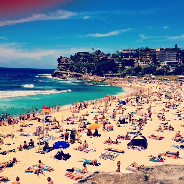 411creative bronte beach