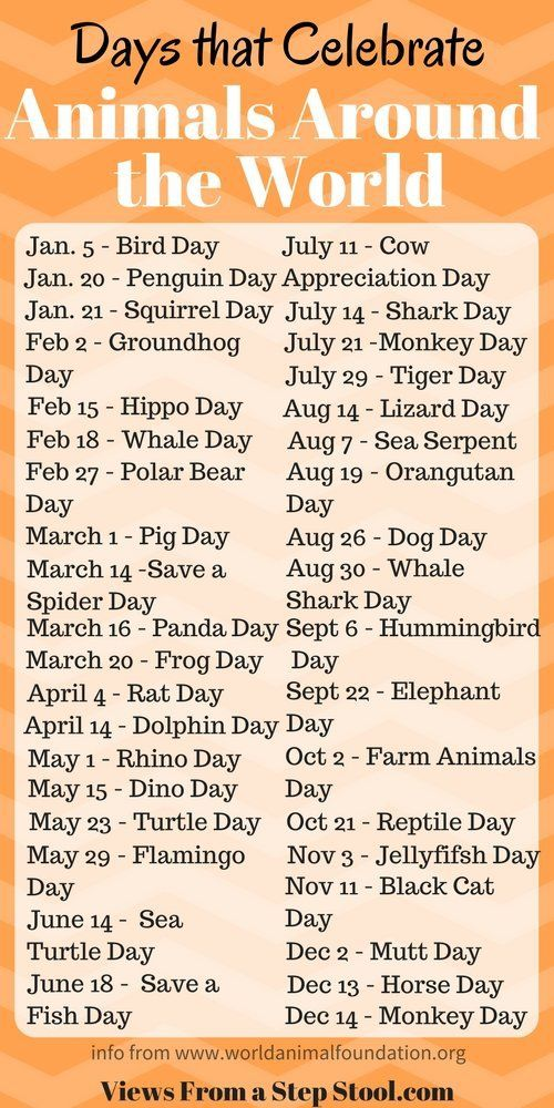 10 best Daycare calendar/holidays images on Pinterest ...