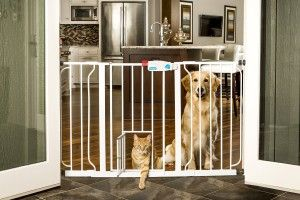 Wide Baby Gate That Won't Damage Walls