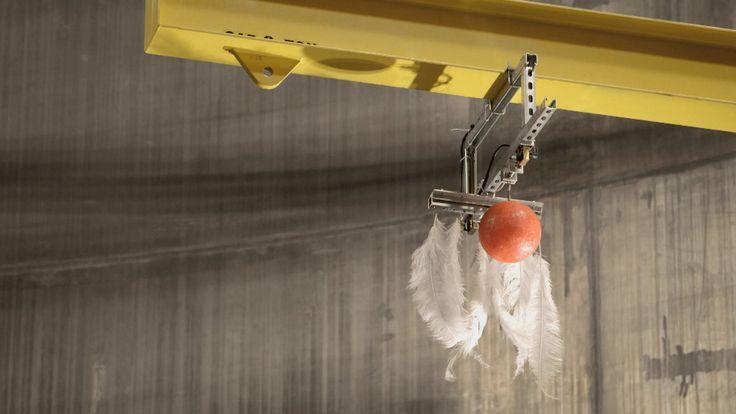 Galileo affermava che una palla di cannone e una piuma avrebbero toccato il suolo contemporaneamente se non ci fosse stata la resistenza dell'aria. All'epoca di Galileo non era possibile fare dimostrazioni sperimentali. Quattro secoli dopo, grazie al progresso tecnologico, è stato ...