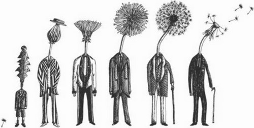 Dandelion Man ... shows the stages of life through a dandelion. Really interesting if you think about it