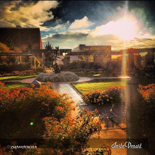 Michigan State University - Tumblr
