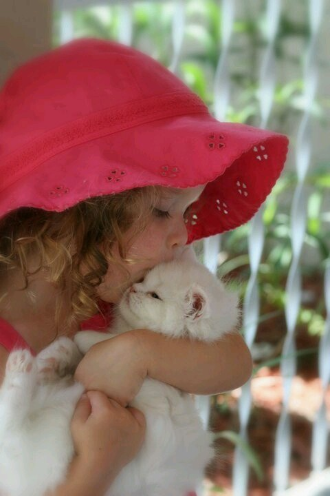 Girl in a red hat, kissing a white kitten.