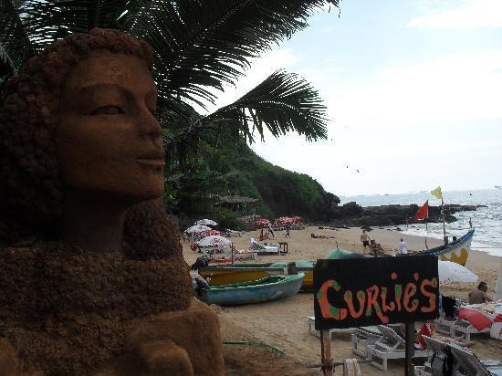 BEST BEACH SHACK IN GOA >>> CURLIES ANJUNA SOUTH BEACH