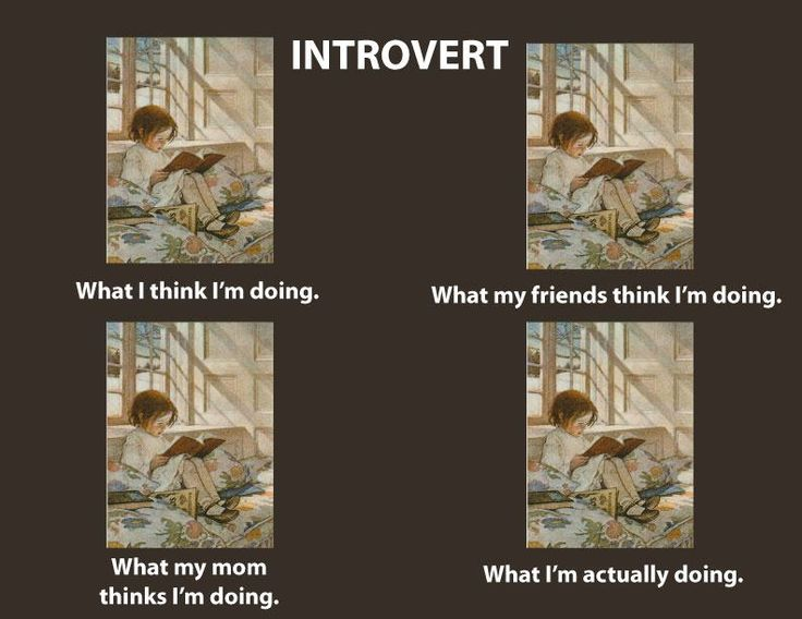 Introvert: Favorite Things, Life, Introvert United, Book, Funny, My Friends, Even, Introvert Humor, I Am