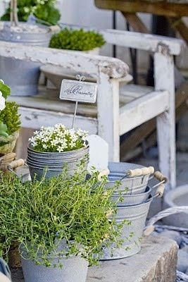 galvanized buckets and weathered chairs. container gardening done beautifully