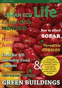 Urban Eco Life E-Magazine