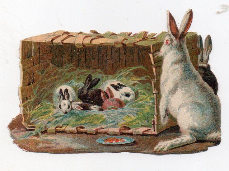 Chromo découpi oblaten glanzbild victorian die cut Lapins Rabbits Kaninchen   eBay