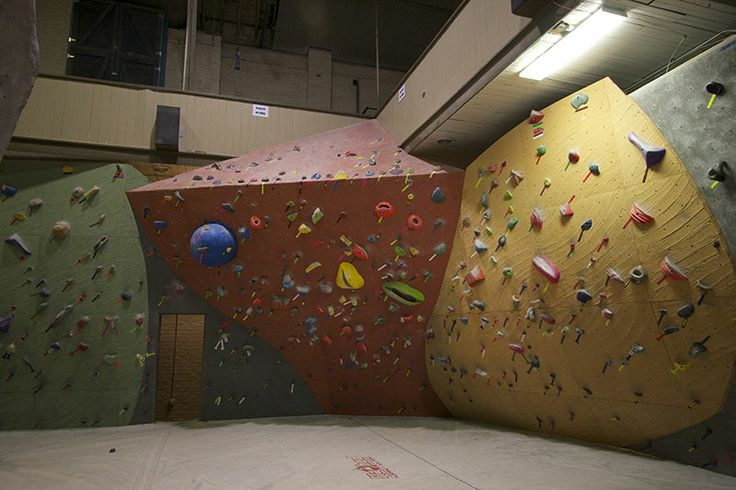 Wild Walls by Elevate Climbing Walls