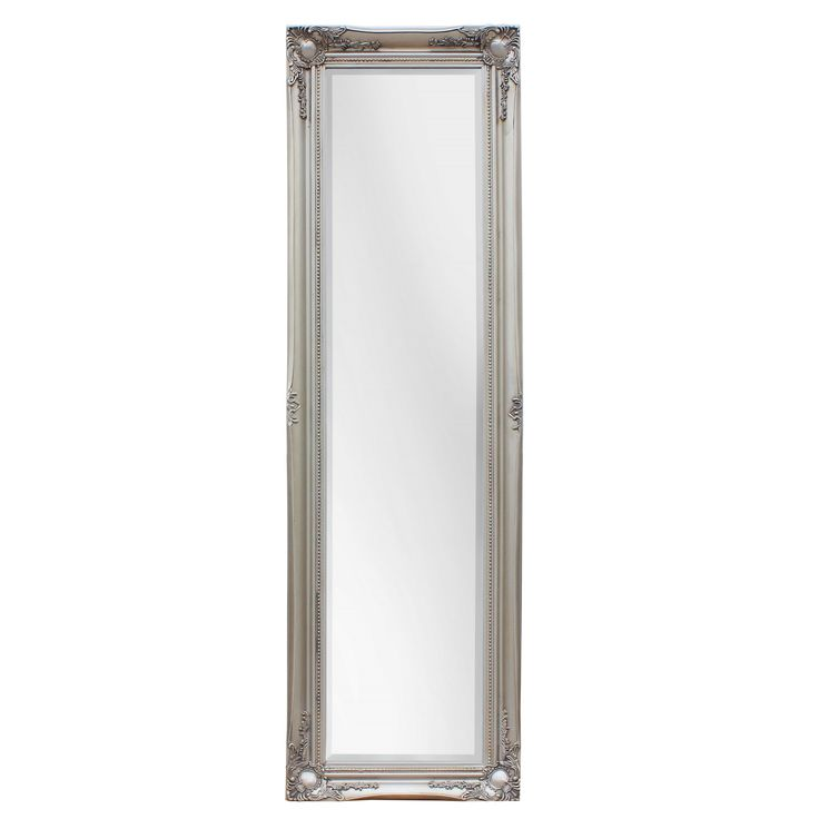Selections by Chaumont Maissance Traditional Full Length Mirror (Satin - Silver)