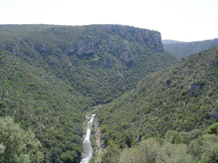 Evrotas river Arcadia Peloponnese
