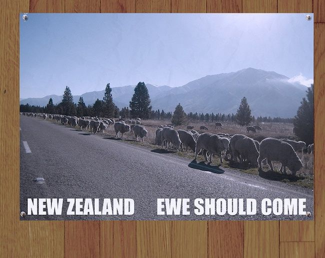 news zealand tourist posters 2 All of Murrays New Zealand Tourism posters from Flight of the Conchords