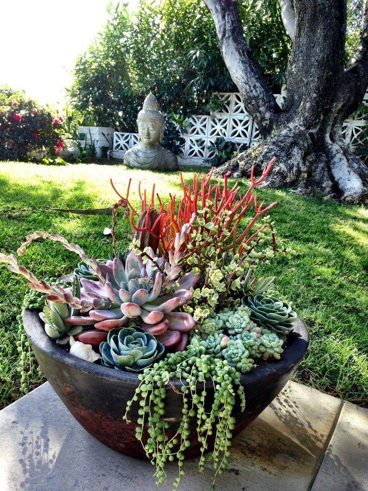 17 best images about landscape ideas on pinterest for Simply garden maintenance