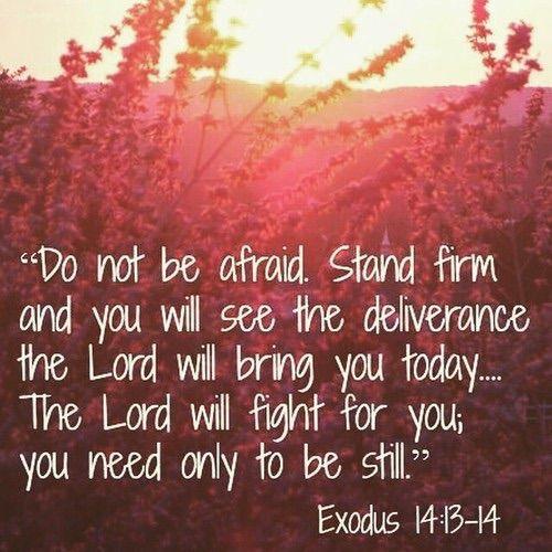 Exodus 14:13-14 ...be still.