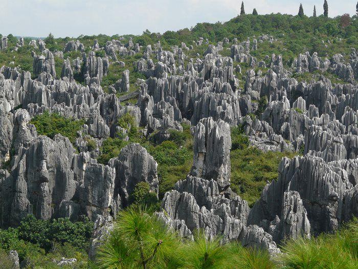 Το πέτρινο δάσος, Κίνα