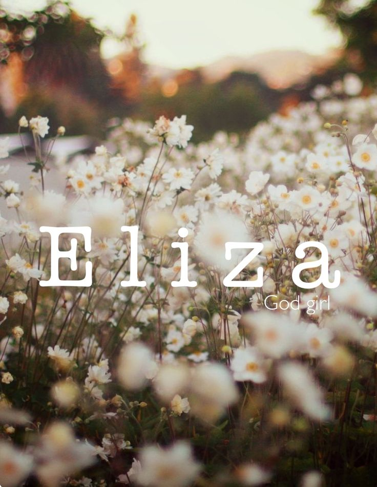 Eliza / Hebrew: joyful (by Samantha Harrington)