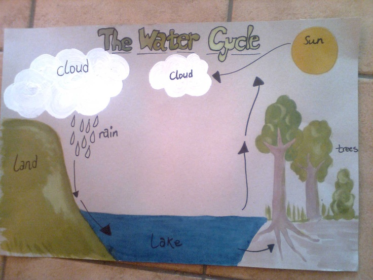 School poster - water cycle