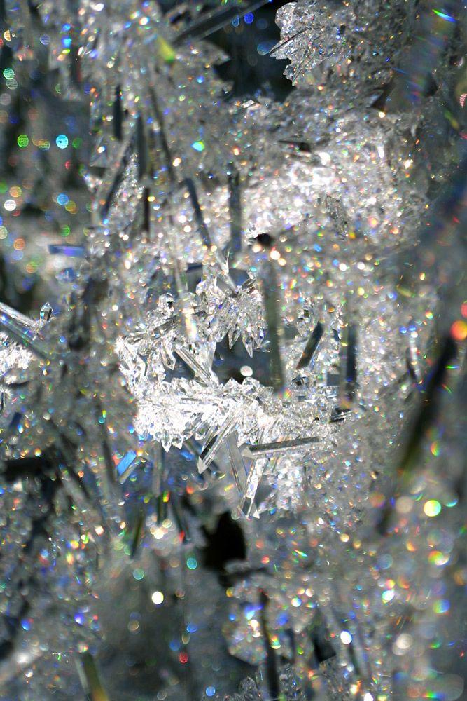 81 Best Christmass Tree Installations Images On Pinterest Art