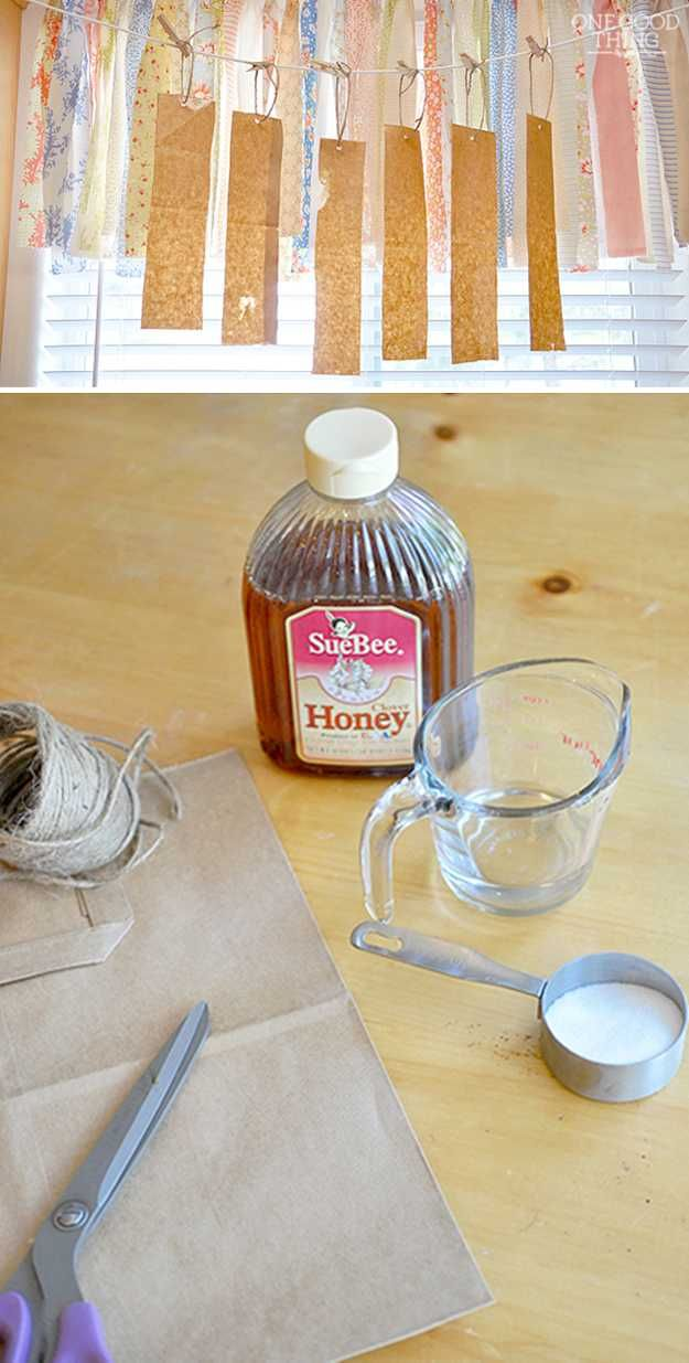 how to make a fly trap out of a bottle