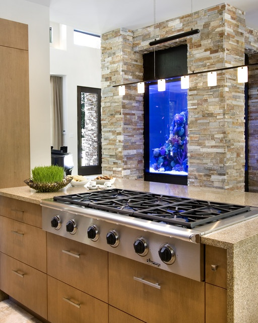 NeMo (New Modern) modern kitchen - could you imagine cooking with a fish tank in front of you?