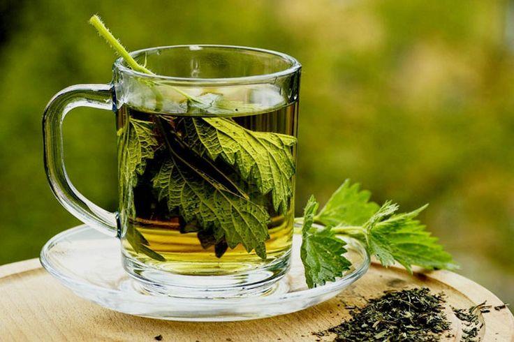 Best Parsley Tea Benefits | Nutrition & Diet
