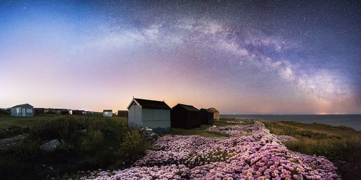 The Milky Way over  Erigeron Glaucus  (Sea Breeze) flowers and the iconic beach huts at Portland Bill in Dorset, England, UK