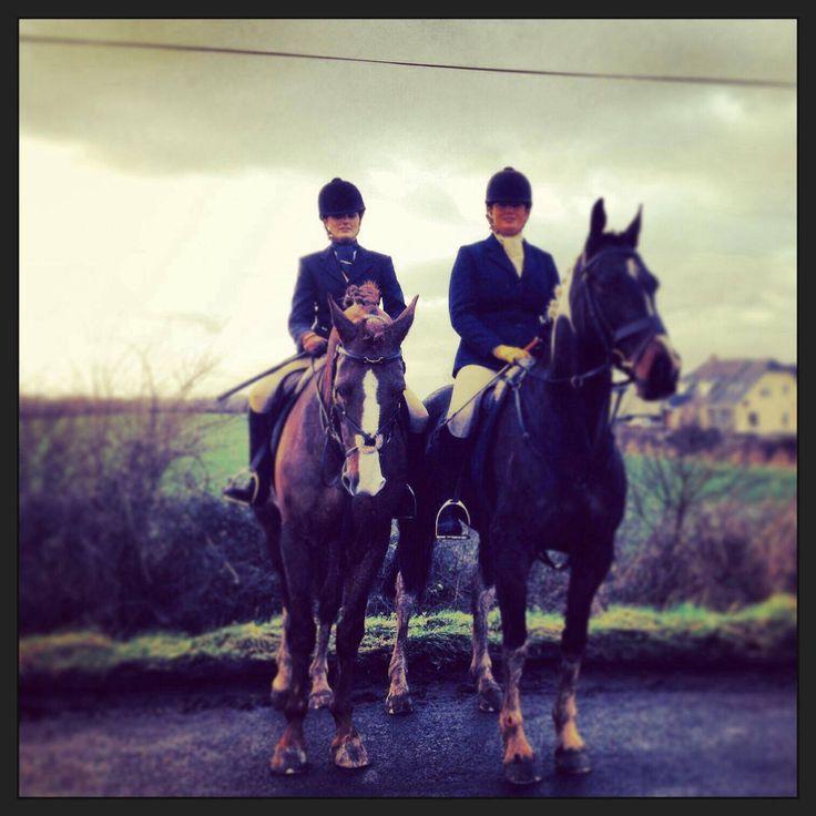 Blazers Dublin: 54 Best Birchill Stables Ireland Images On Pinterest
