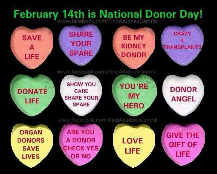 Image result for donor day february 14  gif