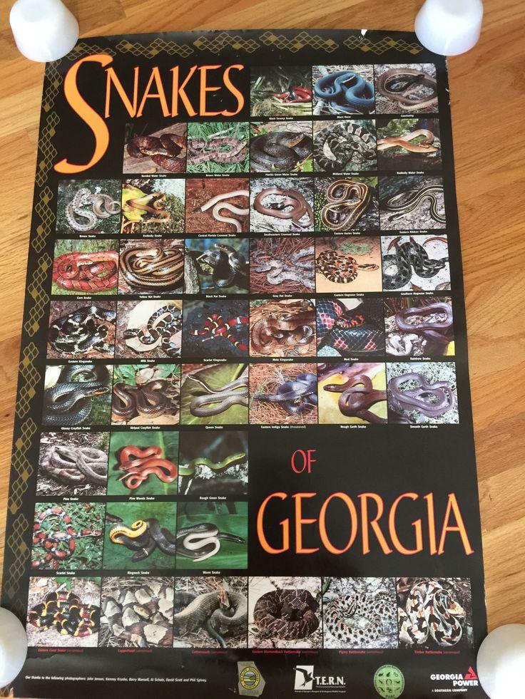 Manuals | Georgia Department Of Driver Services