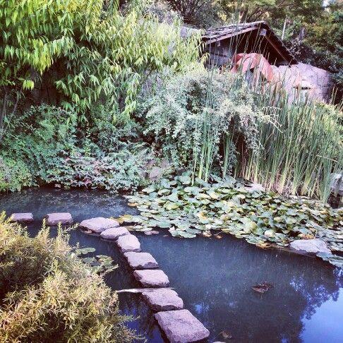 Jardin Japonés, Cerro San Cristobal. RM Chile