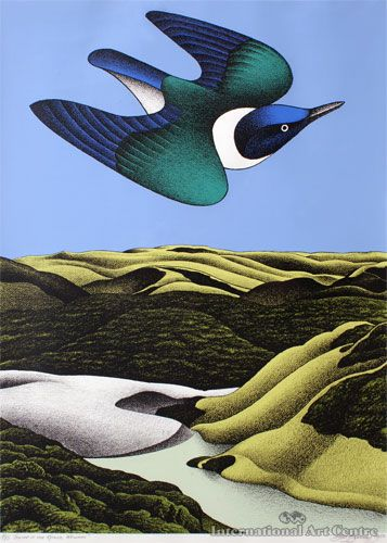 Swoop of the Kotare, Wainamu painting by Don Binney.