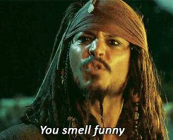 Jack Sparrow gif - You smell funny