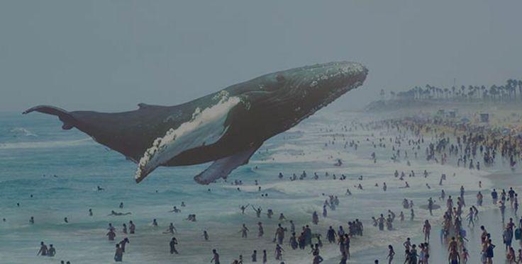 Magic Leapが拡張現実の開発プラットフォームを発表 | TechCrunch Japan