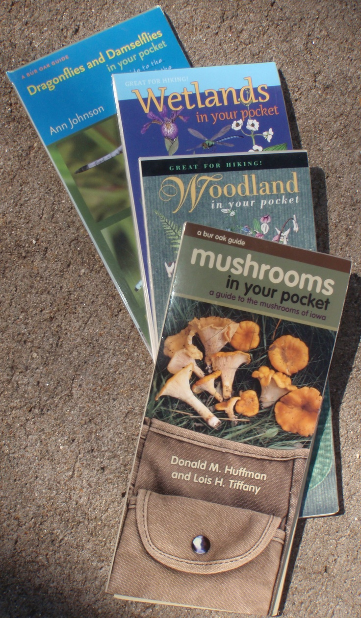 32 best books work wishlist images on pinterest iowa Male Cedar Waxwing Song Bird PA Birds Picture Guide